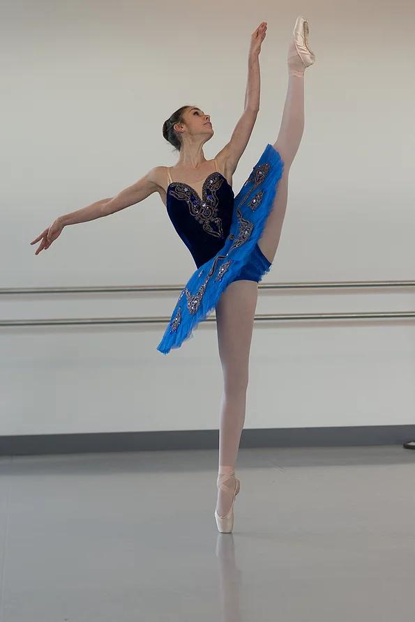 Julie Venutier s'est vue attribuer, lors du concours du YAGP (Youth American Grand Prix) qui s'est déroulé en Novembre à l' Opéra de Paris) - une bourse par le Bolchoï pour cet été. - une bourse au Dutch National Ballet academy (Het National Ballet ).